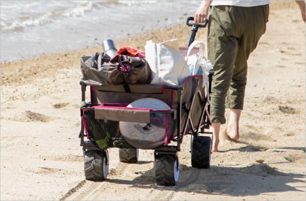 段差や砂浜の悪路だって走破する大型タイヤを搭載。